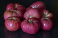 בקרוב, עגבנייות סגולות.